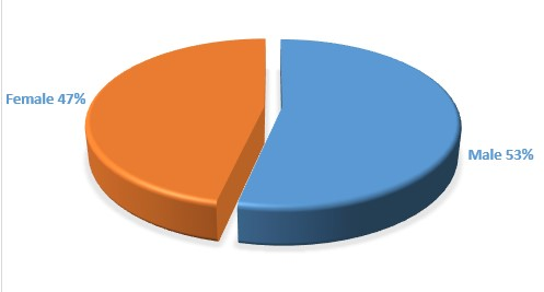 Gender Ratio of the Audience (in percentage)