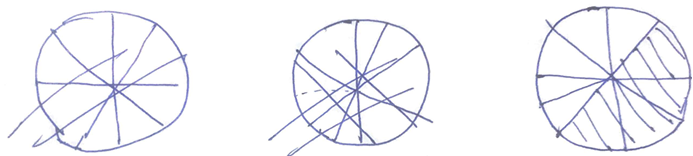 Figure 3. S2's representation of 4/9 in        a circle